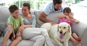 family-on-couch-with-dog