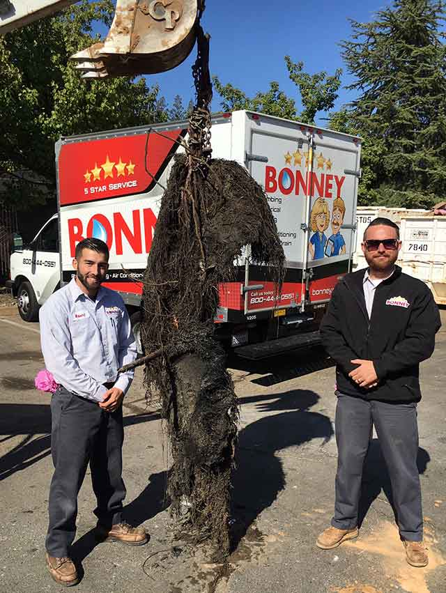 Sewer Pipe Obstruction   Bonney Plumbing