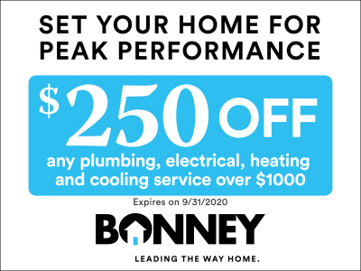 $250 off Bonney service over $1000